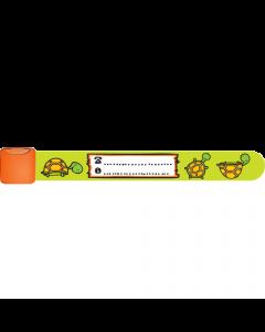 PI13 - Tortugas
